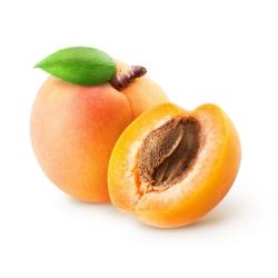 Aprikoosiseemneõli - kingitus looduselt!