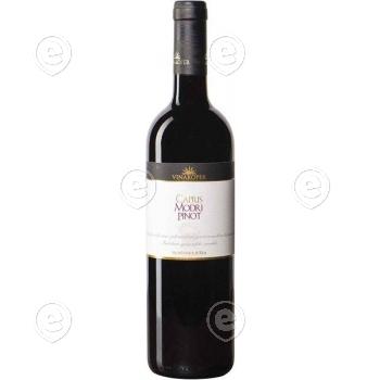 Vein Capris Modri Pinot/Pinot Noir, 2013,13,5%, 0,75l