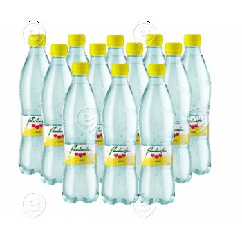 12xMineralwater Radenska Lemon 0,5l plastic