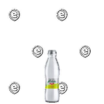 Radenska sidrunheinaga 0,25L  klaaspudelis